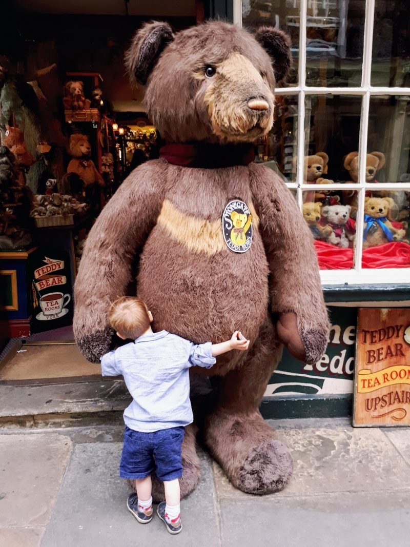 teddy bear shop york