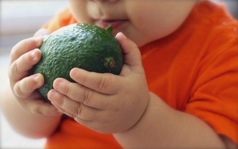 world vegan month avocado photo