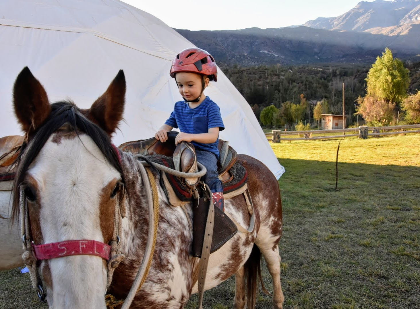 horse riding for kids in the Andes, Chile