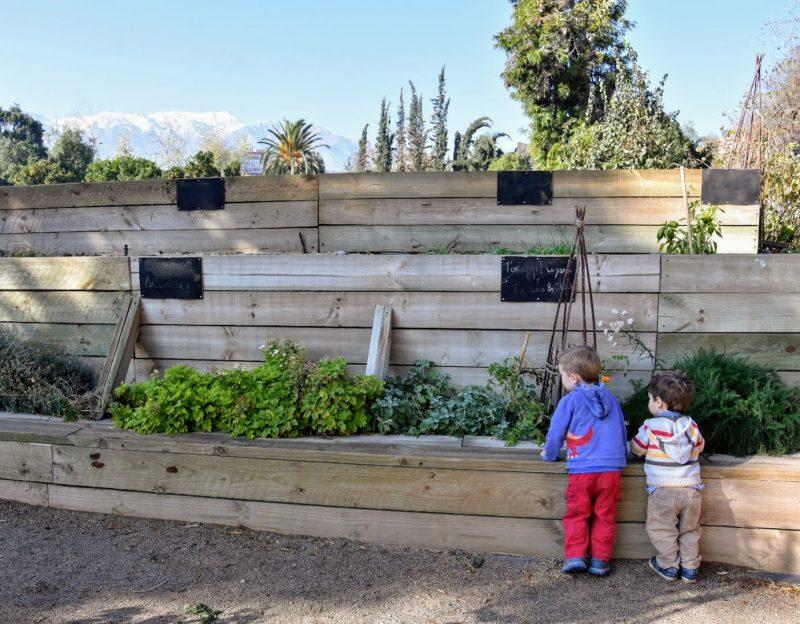 The Secret garden library for kids in Vitacura, Santiago