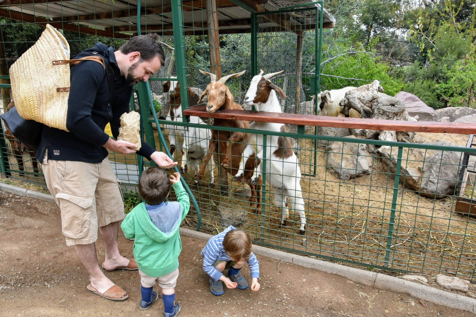 farm for children in Santiago