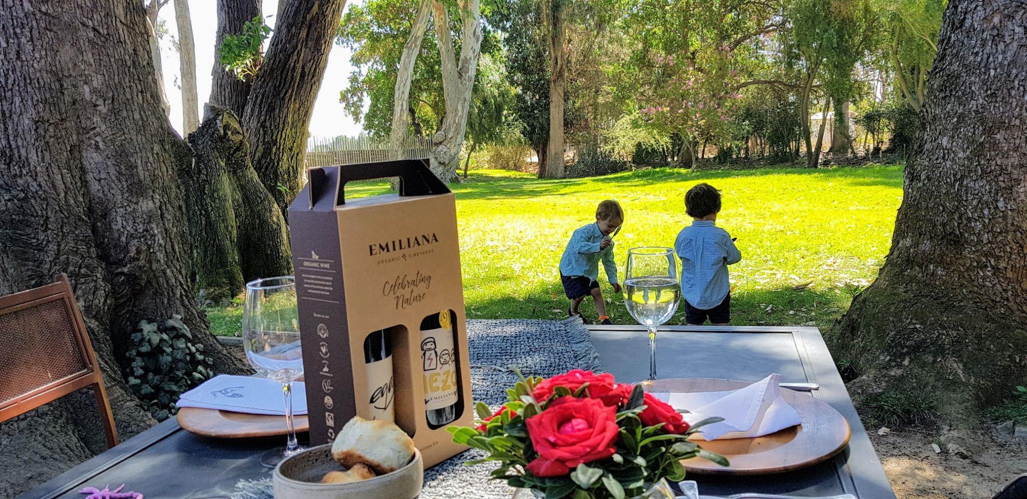 Casablanca wine tour