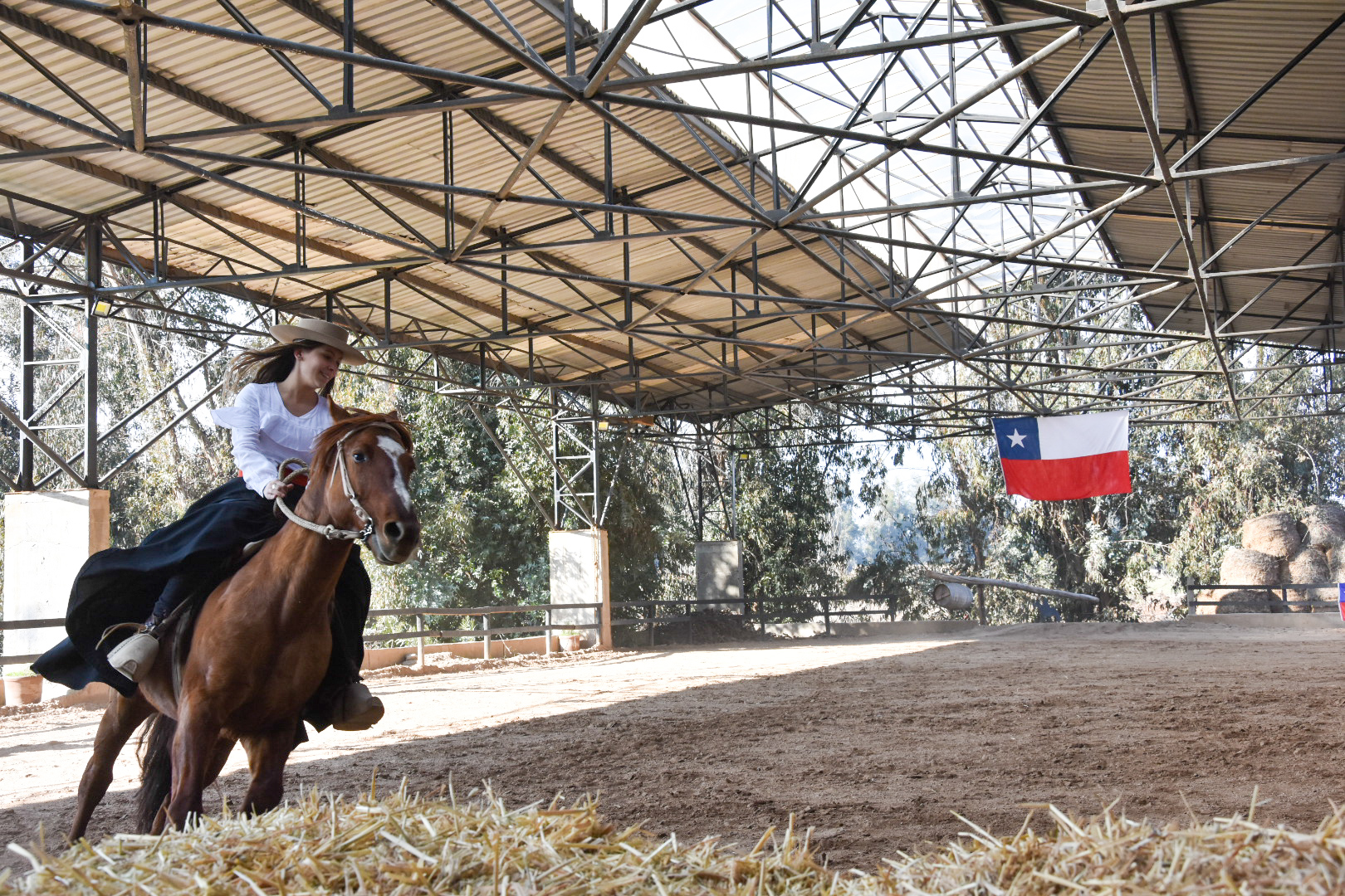 Lo Pirque horse show