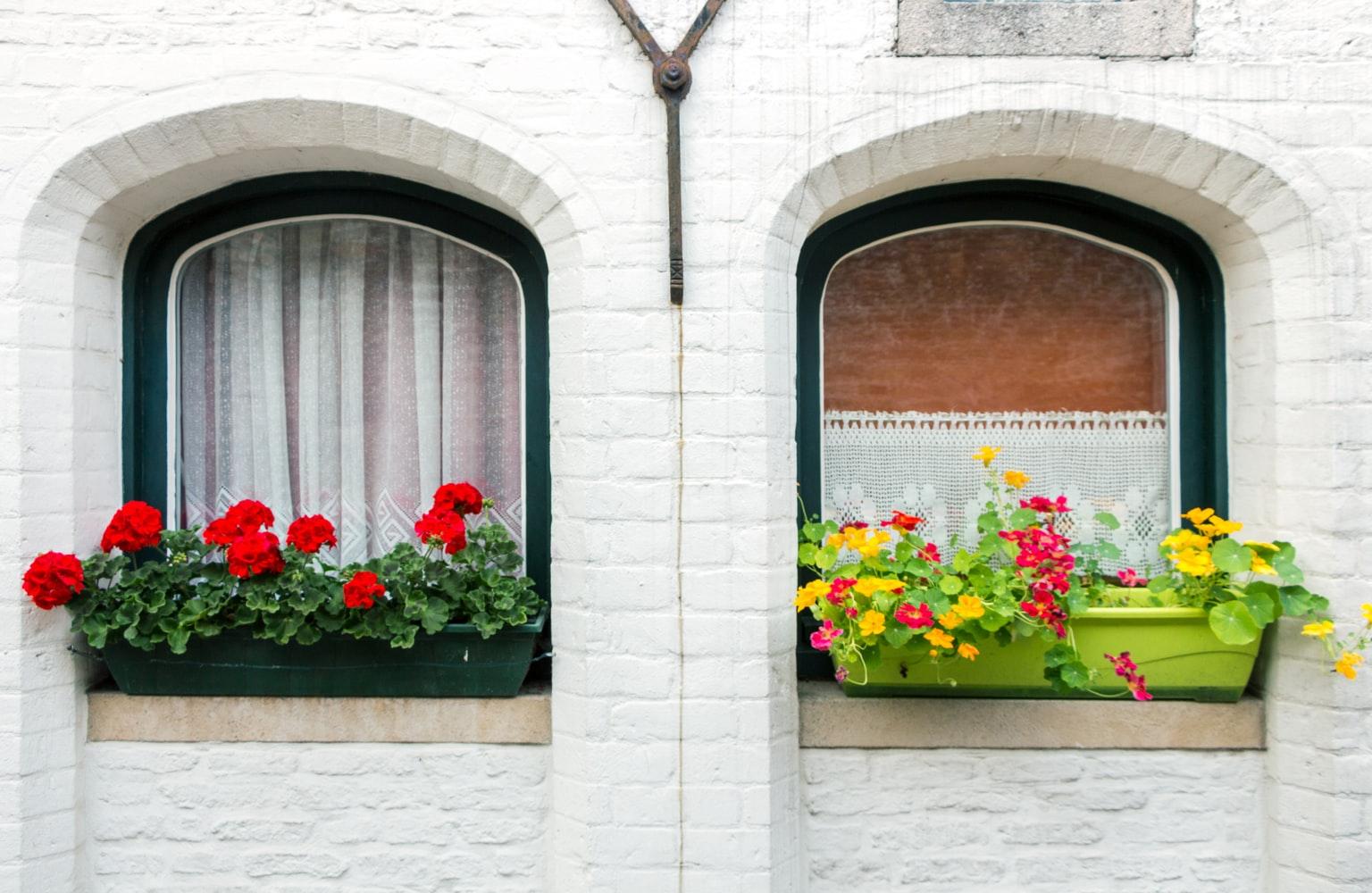 Belgium apartment