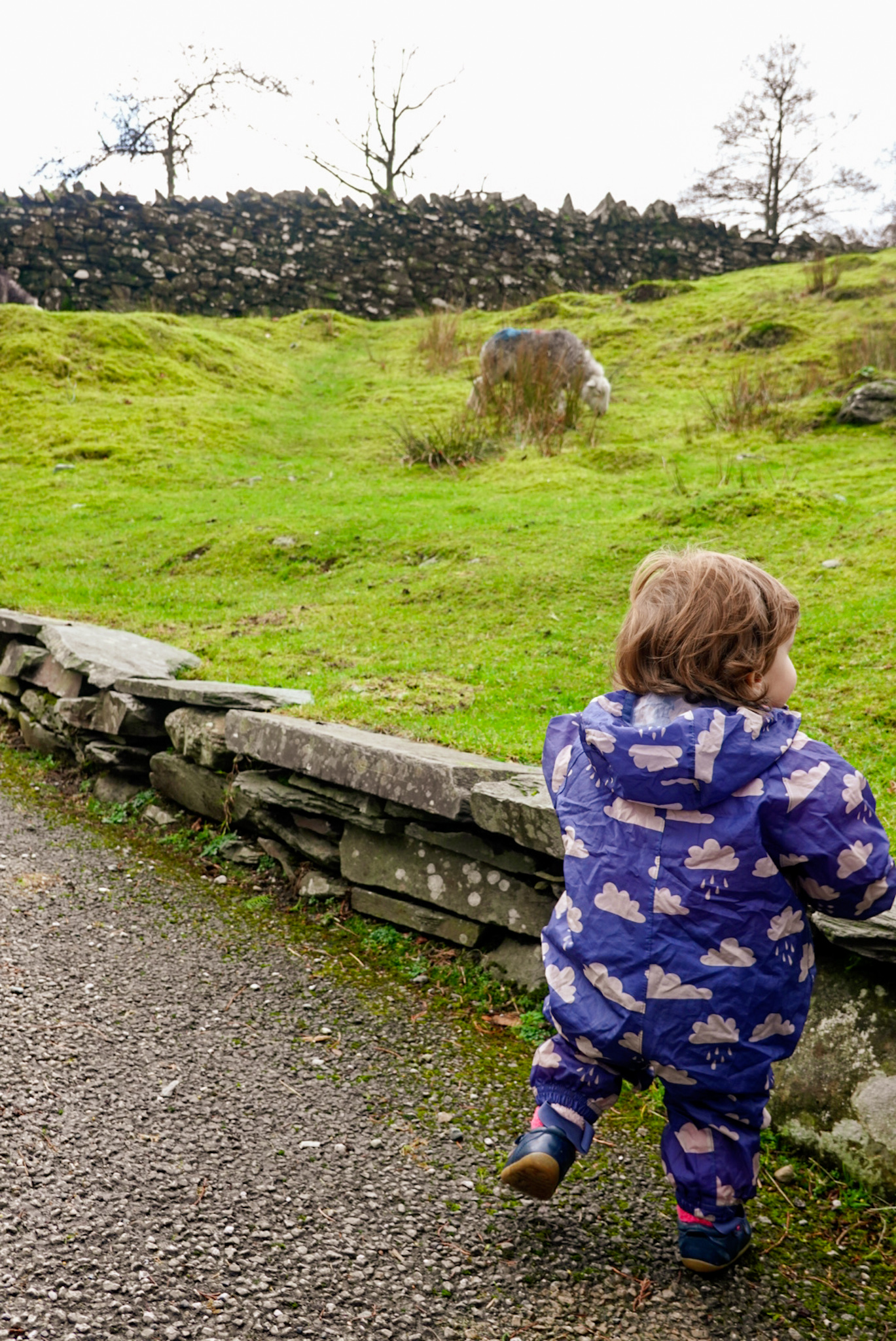 toddler in the Lake District