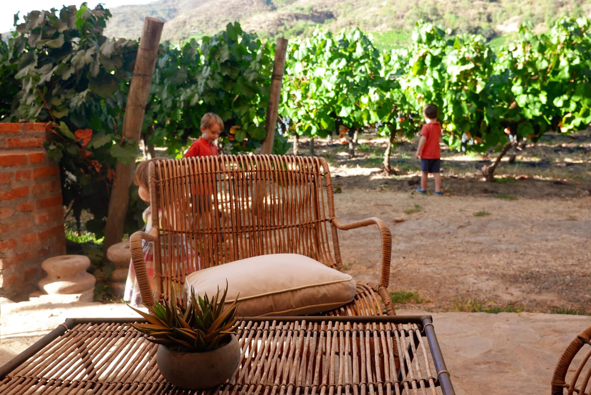 Santa Cruz winery, Chile