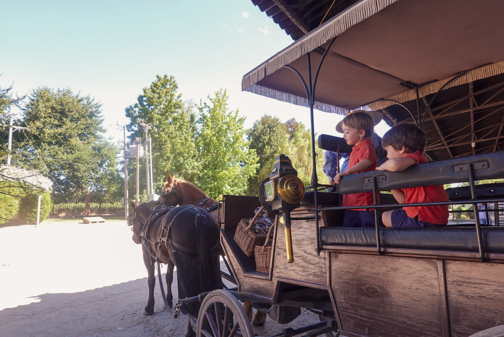 Viu Manent horse and carriage