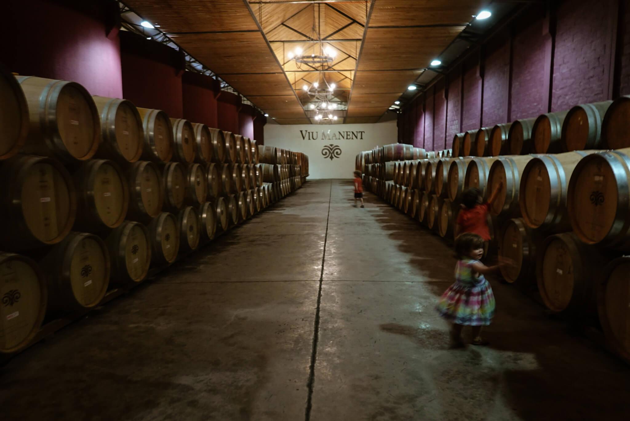 Viu Manent cellars