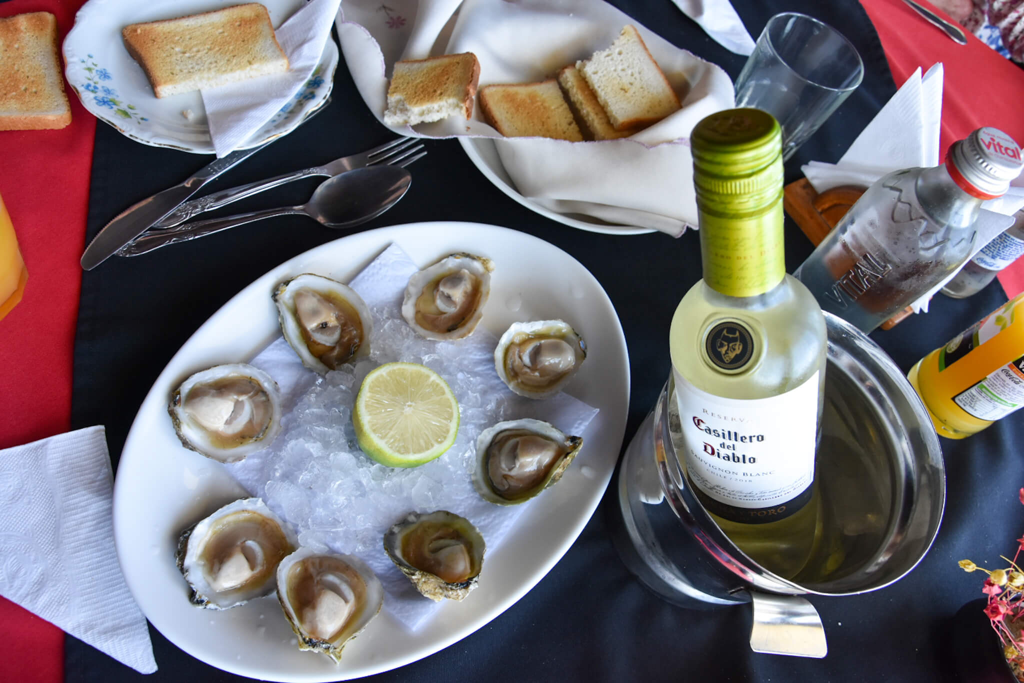 Chiloe oysters