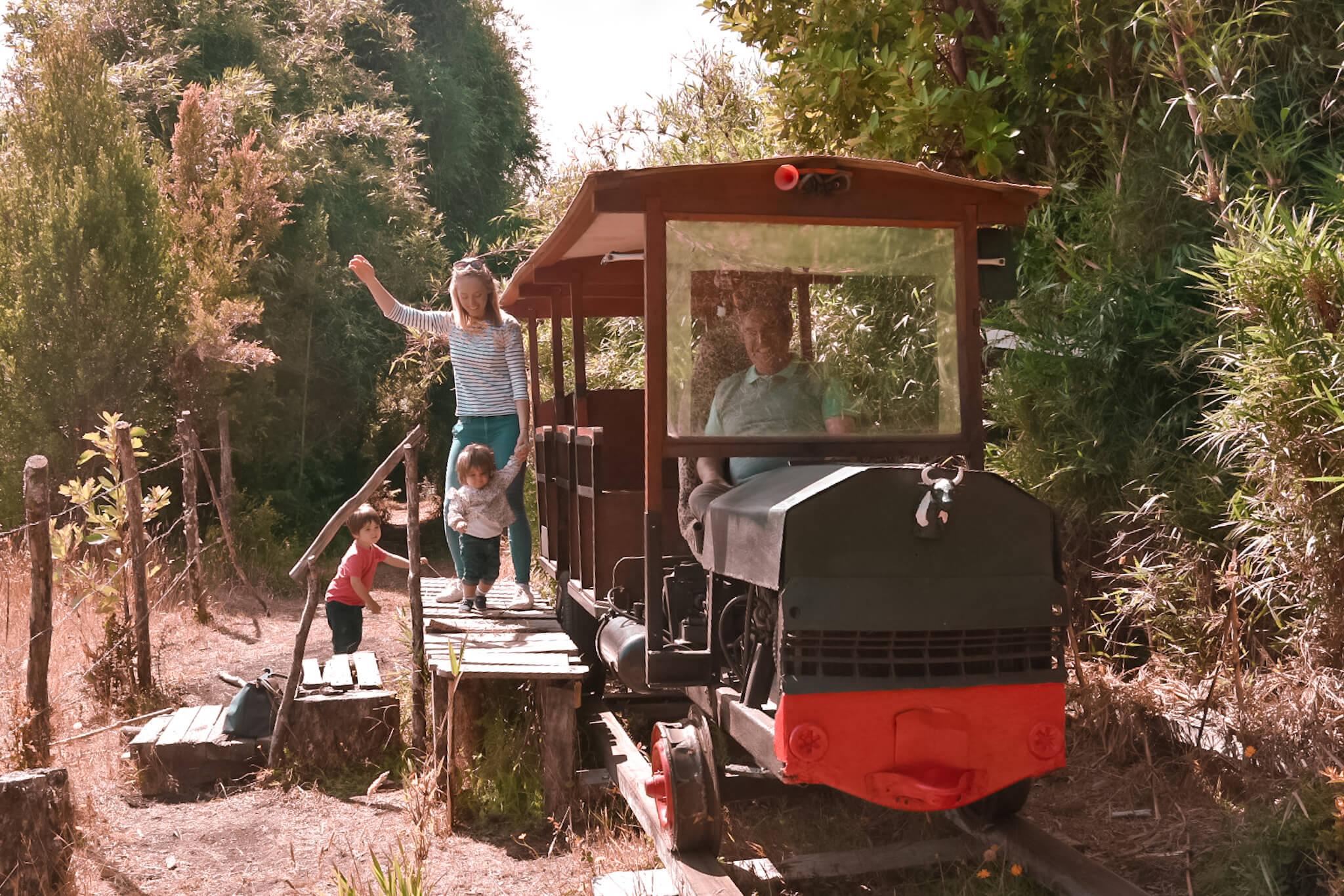 Chiloe island wooden train