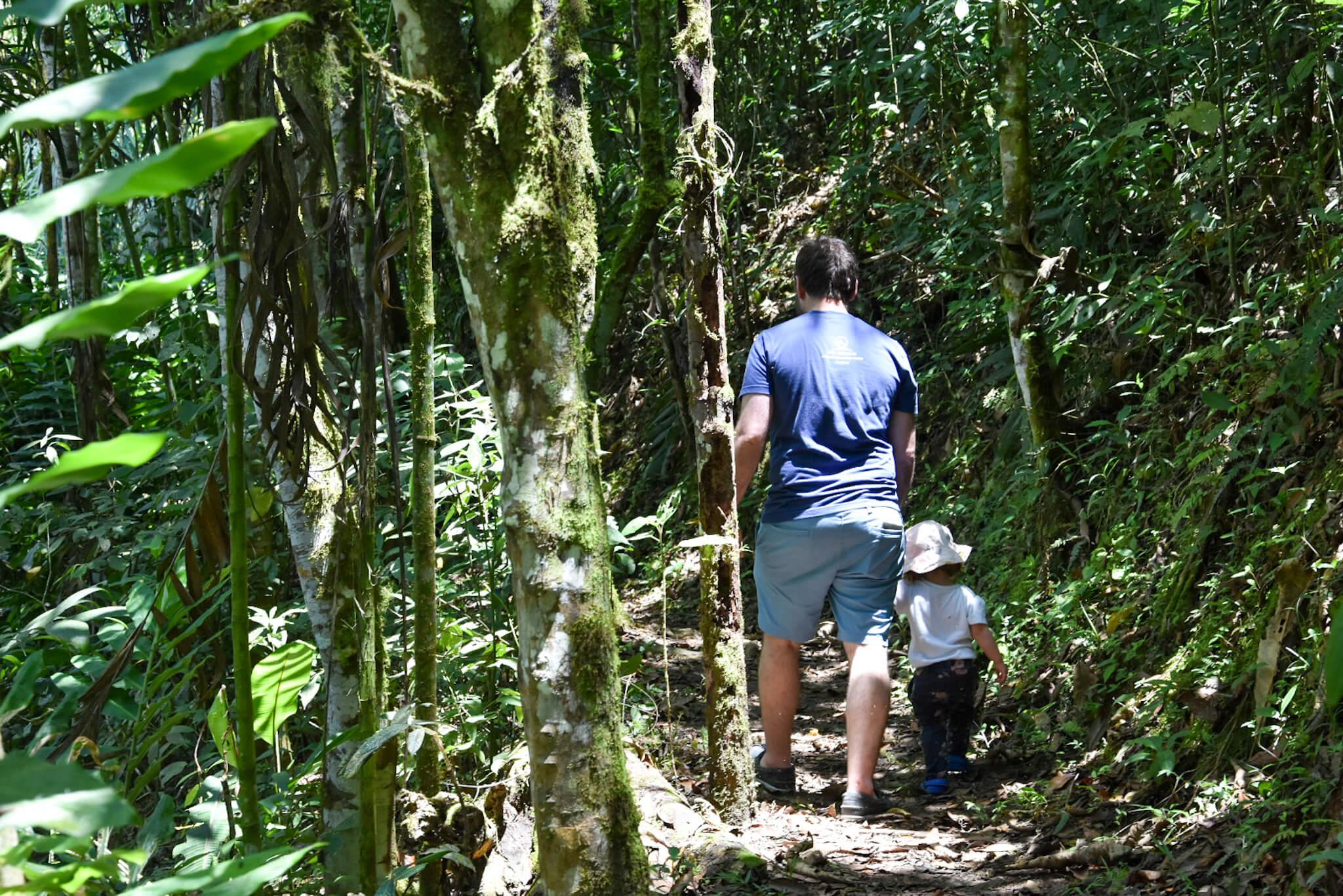eco botanical gardens Mindo