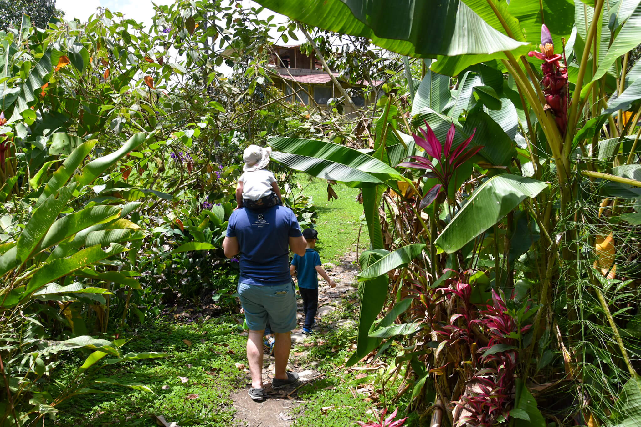 Mindo gardens